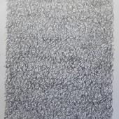 65x50 sur papier